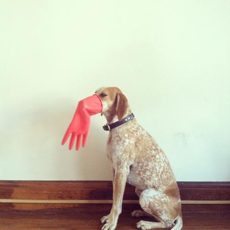 maddieonthings_glove